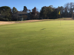 Highland Creek Green Renovation